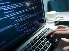 Programmers/Web Developers