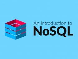 NO SQL Consultants